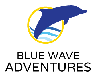 BlueWave Adventures Dolphin Logo