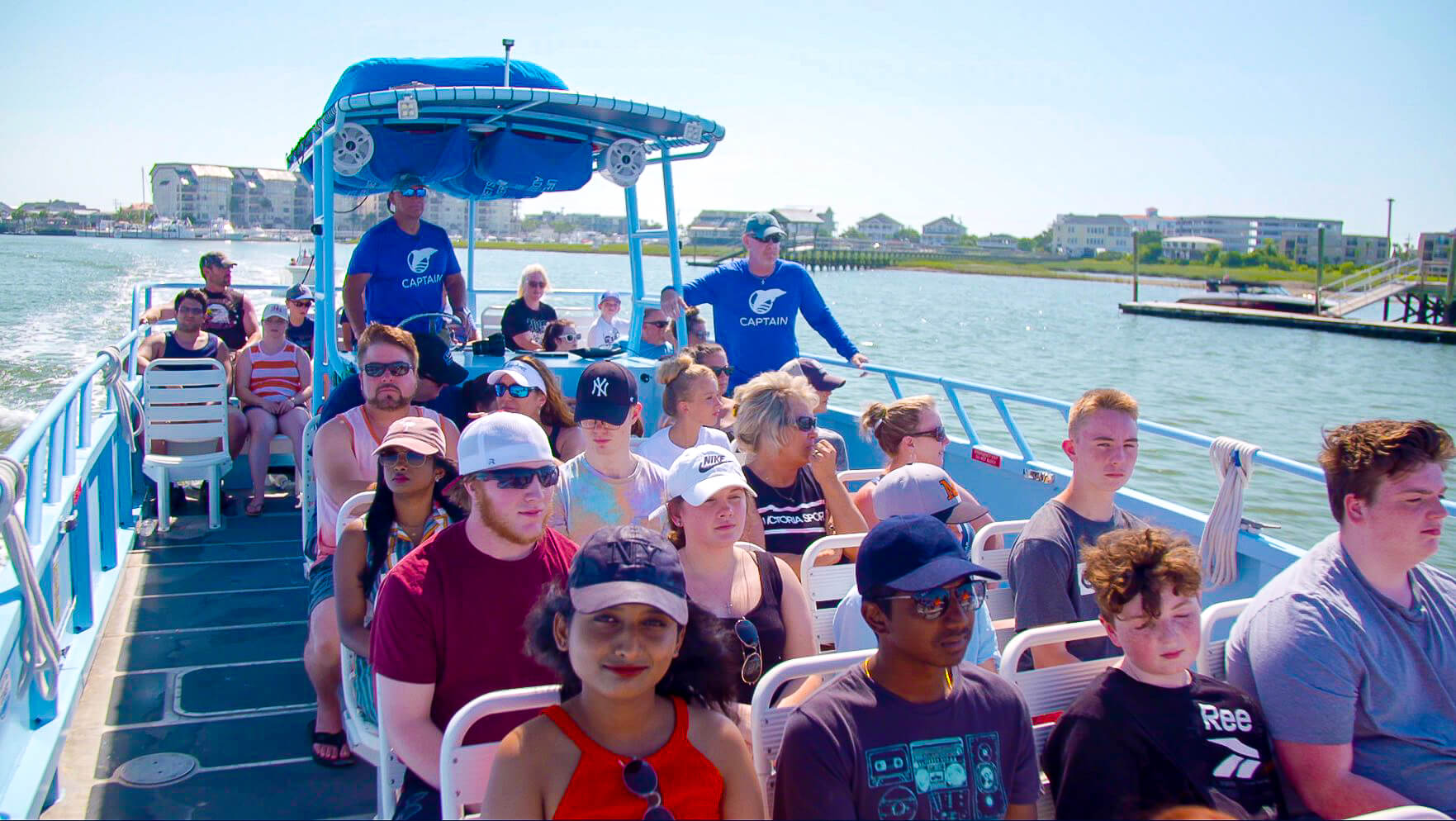 Why Now Is The Best Time To Take A Dolphin Cruise