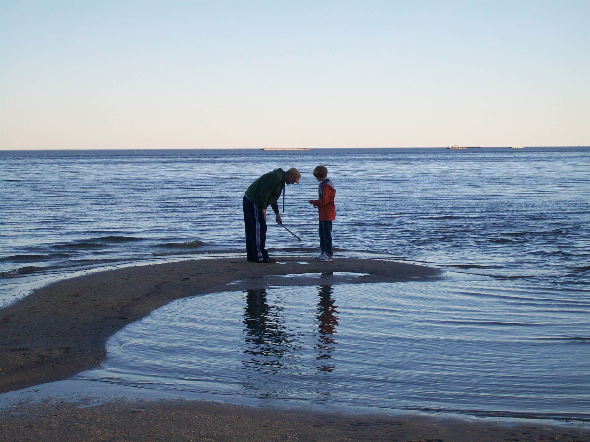 marine-life-teaching-resources-for-kids