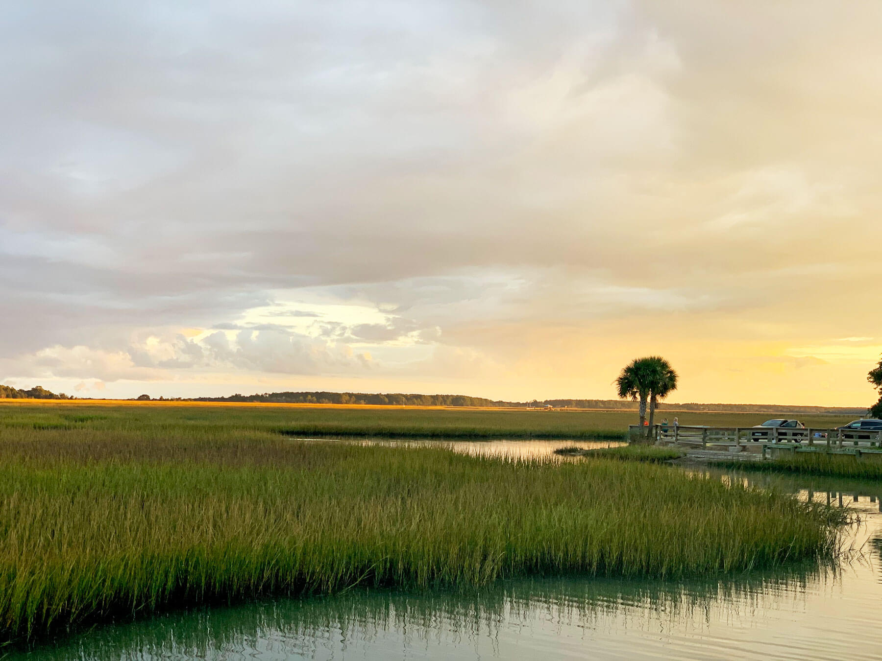 All About the Murrells Inlet and Myrtle Beach Ecosystem